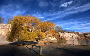 Picture autumn, the sky, tree, New Zealand