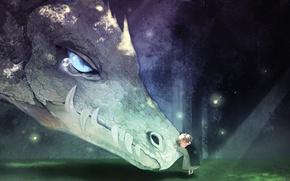 Picture dragon, boy, zoubi