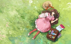 Picture grass, books, album, Girl, suitcase, flowers, sheep, straw hat, pink dress