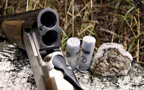 Wallpaper HUNTING, The GUN, FOREST, VERTIKALKA, LOG