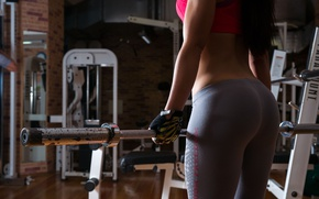 Picture girl, style, figure, Grif, the gym
