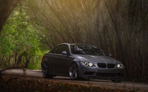 Picture car, BMW, BMW, forest, E92, Sedan
