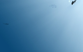 Picture blue, minimalism, The diver
