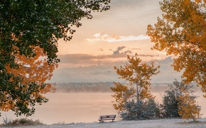 Picture frost, autumn, the sky, clouds, snow, trees, bench