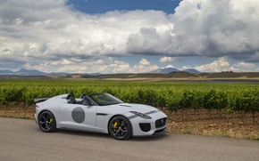 Picture Jaguar, Jaguar, UK-spec, F-Type, 2014, Project 7