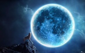 Picture night, rock, collage, the moon, wolf, howl