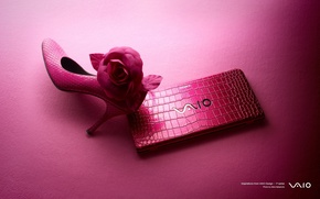 Picture laptop, pink background, Shoe