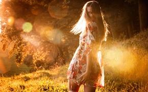 Picture summer, girl, light, glare, the sun, Eikonas