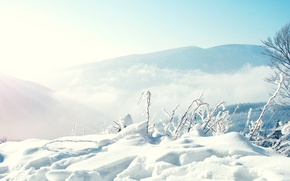 Picture snow, trees, mountains, fog, Nature, Winter, the snow, weather, Conditions