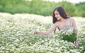 Picture field, girl, flowers, smile