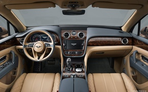 Picture tree, Bentley, leather, devices, salon, the wheel.