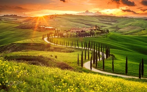 Wallpaper valley, the sun, Italy, Tuscany, derevya