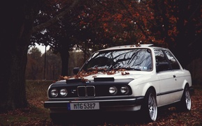 Picture autumn, leaves, BMW, BMW, E30, Stance