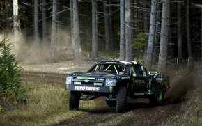 Picture forest, forest, Chevrolet, chevrolet, truck