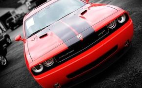 Wallpaper Red, Challenger, Dodge