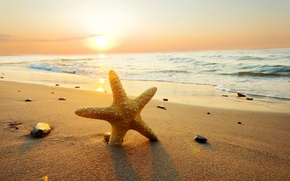 Picture sea, beach, summer, the sky, clouds, sunset, nature, beach, sea, ocean, sunset, sun, sand, starfish