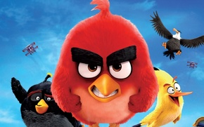 Picture cinema, animation, Red, game, aircraft, flying, bird, wings, cartoon, eagle, movie, series, film, friends, angry, …