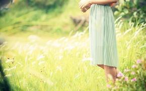 Picture greens, field, grass, girl, the sun, flowers, background, widescreen, Wallpaper, feet, mood, plant, dress, wallpaper, …