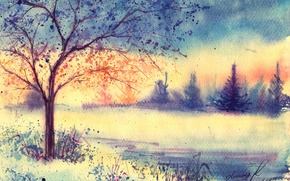 Picture winter, grass, tree, morning, watercolor, tree, painted landscape
