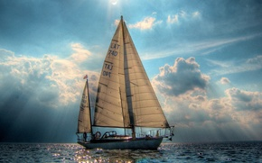 Wallpaper sea, sailboat, yacht, sails