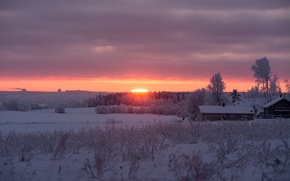 Picture sunrise, morning, snow, winter