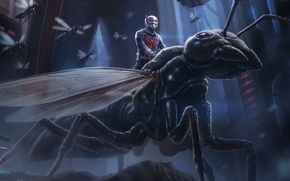 Picture insects, fiction, figure, art, marvel, comic, Ant-man, Ant-Man