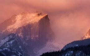 Picture forest, snow, dawn, mountain, haze, Hallet Peak, Rocky Mountain National Park