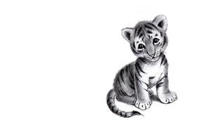 Picture sadness, art, pencil, tiger, children's
