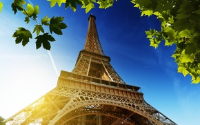 Picture the sky, leaves, the sun, France, Paris, green, Eiffel tower, Paris, maple, France, Eiffel Tower, ...