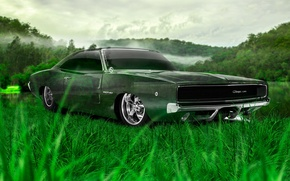 Picture Nature, Design, Grass, Style, Dodge, Wallpaper, Dodge, Nature, Grass, Green, Photoshop, Photoshop, Green, Design, Charger, …