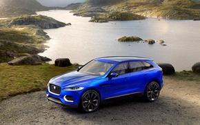 Picture car, Jaguar, nature, blue, cross, Jaguar c x17