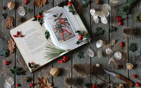Picture elf, barb, book, needles, physalis, Holly, Holly, verse