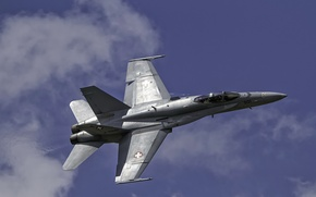 Picture f18, hornet, swiss