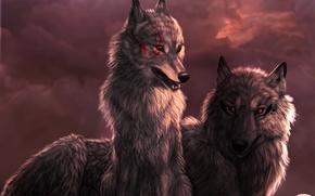 Wallpaper clouds, sunset, Wolf, wolf, art, Dark_Sheyn