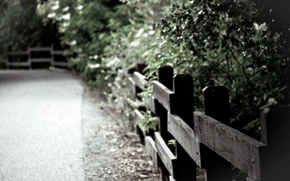 Picture leaves, macro, trees, background, widescreen, Wallpaper, the fence, the fence, wooden, wallpaper, widescreen, background, full …
