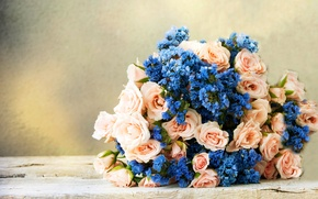 Picture background, roses, bouquet, flowers, bouquet, roses