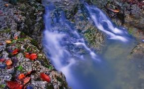 Picture autumn, leaves, water, stream, stones, stream