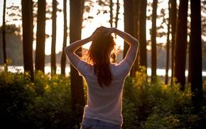 Picture freedom, girl, joy, dawn, Sunshine morning