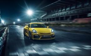 Picture Porsche, Cayman, Porsche, GT4, 2015, 981C, Caiman