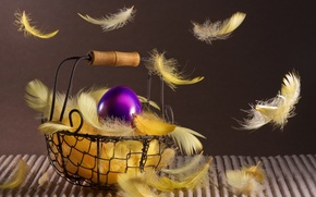 Picture holiday, basket, egg, spring, feathers, Easter, basket, Easter, Easter