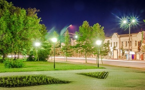 Picture trees, night, lights, street, lights, signs, bright, lawn, beds, Omsk, green light