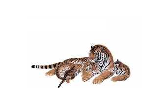 Picture love, kids, mom, concern. weasel, tigress, the cubs