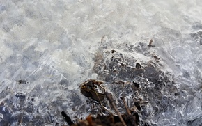 Picture ice, winter, water, river, snowflake