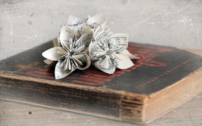 Picture style, Origami, Book