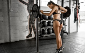 Picture face, body, sports, beauty, fitness, sneakers, rod, press, the gym, Dani