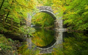 Picture autumn, forest, trees, bridge, reflection, river, England, arch, Devon, England, Devon, Dartmoor, River Dart, Dartmoor, ...
