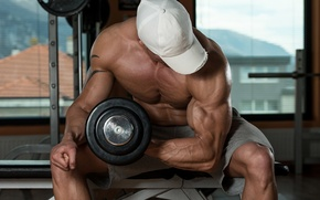 Picture dumbbells, bodybuilder, gym, training, bodybuilder, Gym, muscle, muscle, pose