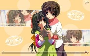 Picture Ibuki, Clannad, Clannad