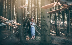 Picture forest, girl, fantasy, art, bear, aircraft, the hut