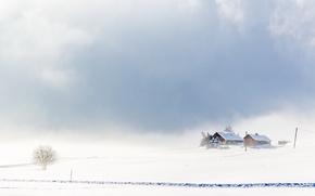 Picture winter, field, landscape, fog, home